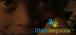littleSequoia